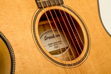 breedlove_concertina_e_soundhole