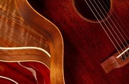 rosewood-free_guitars