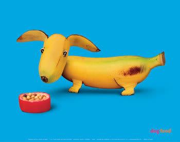 Creative Art with Food