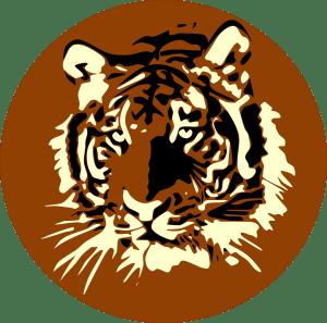 act therapie metaphore tigre boris dylan