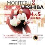 Affiche_Doshu_stage_2016_A4_DEF_S