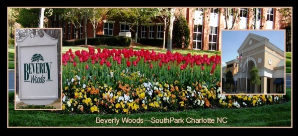 Charotte NC Beverly Woods