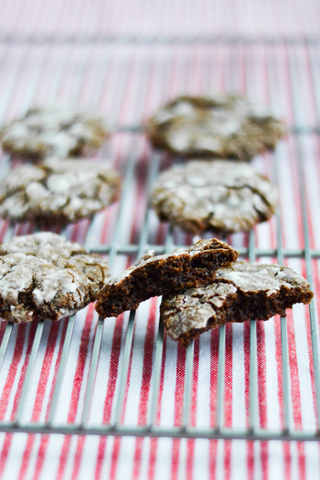 Fudgy chocolate cookies covered in a powdered sugar crust