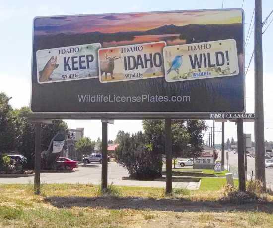 Keep Idaho Wild