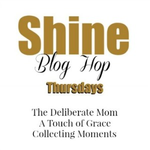 Shine Blog Hop #102