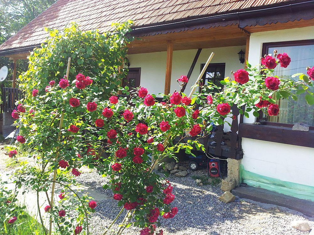 adelaparvu.com despre casa traditionala reconditionata Brasov (1)