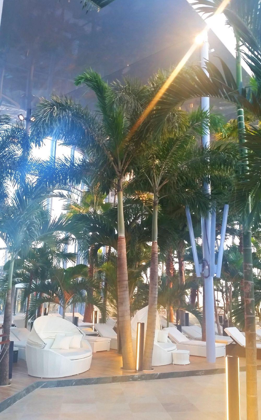 adelaparvu.com despre Therme Bucuresti, zona The Palm (23)