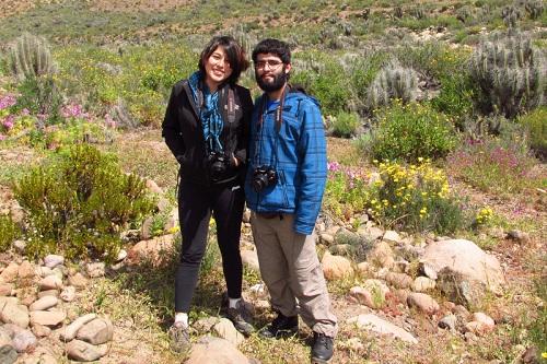 anita - ariel - quebrada de los choros - dfc - desierto florido - flores