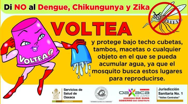Continúa Municipio de Oaxaca y SSO combate  permanente contra mosquito Aedes Aegypti (14:00 h)