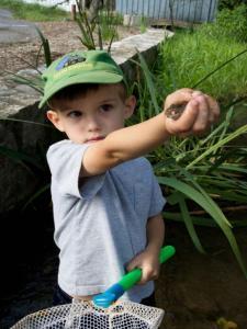 boy caught a fish