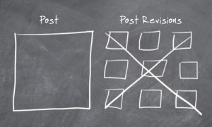 06-post-revisions