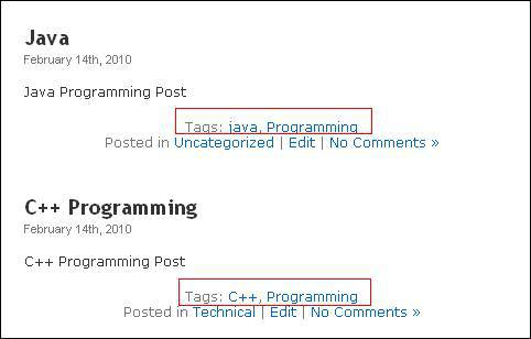 Types of Content in WordPress tag Programming