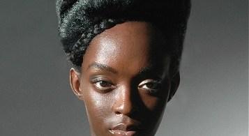 penteados-para-cabelos-crespos-e-afro (21)