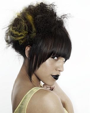 penteados-para-cabelos-crespos-e-afro (6)
