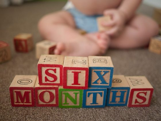 six months spelled wrong