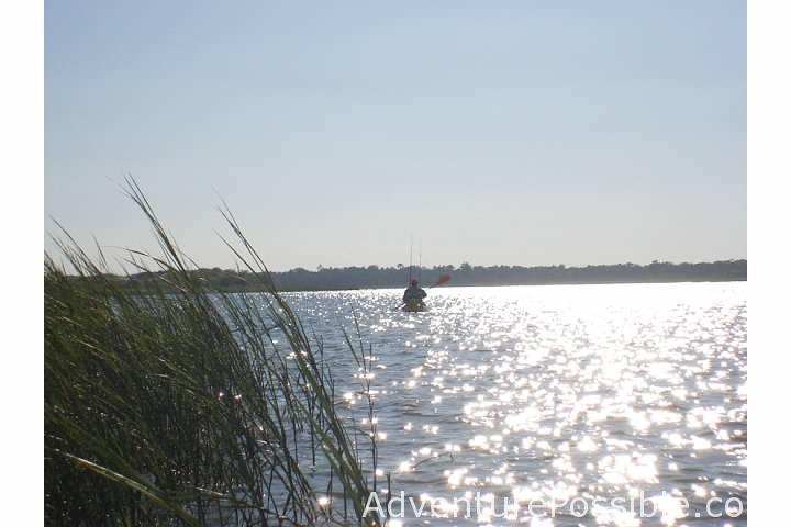 Kayaking the marsh in ICW near Hampstead