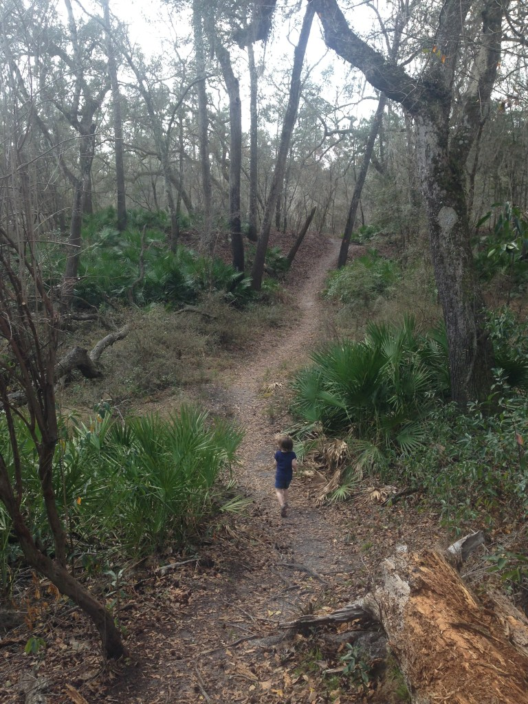 Walking on the path at Stephen foster folk center towards suwanee river