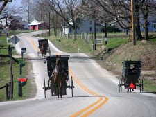 Amish Buggies in Geauga County, Northeast Ohio