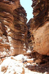20160624-blacktail-canyon-hike (5) (Large)