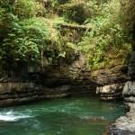 El Santuario Nacional Pampa Hermosa se encuentra ubicado en la región Junín cubre gran parte de la selva central del Perú