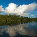 La Reserva Nacional Pucacuro (Loreto) conserva ecosistemas esenciales de la Amazonía.