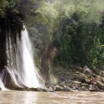 santuario_nacional_megantoni_cusco_turismo-peru