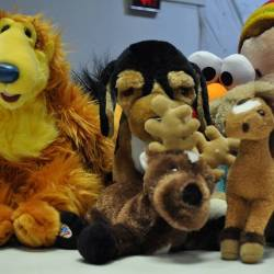 A&E Clothing Soft Toys
