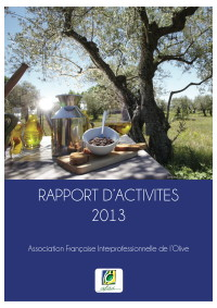 Rapport_dactivites_2013_-_vdef-2