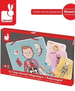 pol_pl_Ukladanka-magnetyczna-Cialo-czlowieka-Janod--1313_1