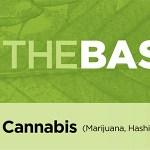 AFM_Basics_Sheet_Cannabis_WEB-1