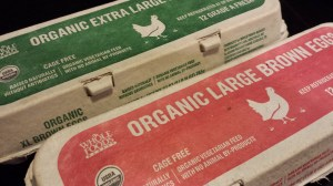 Whole Foods Market's organic eggs (Photo Credit: Adroit Ideals)