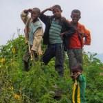 エチオピアってこんな国!~特選写真集その3:子どもたちの笑顔を求めて