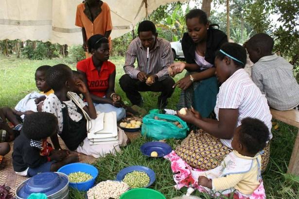 栄養改善ワークショップ(ウガンダ)