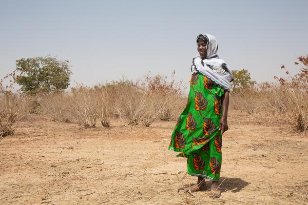 気候変動の脅威と立ち向かうマリの女性グループ!世界水の日で報告書が発表!