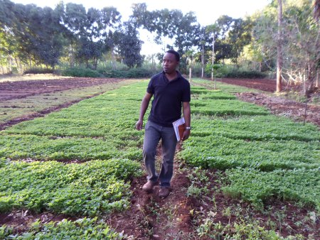 african business agri 5