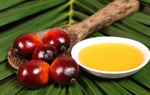 african business oil palm
