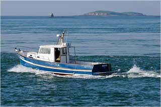 Les produits de la pêche ont enregistré durant le premier semestre de