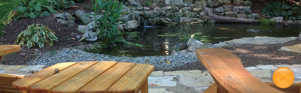 Ecosystem-Ponds