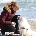 Lær at forstå din hund – Truende signaler