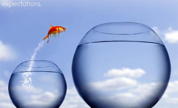 beginner-freelancer-get-web-design-clients-4
