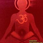 Pursuit of Vidya