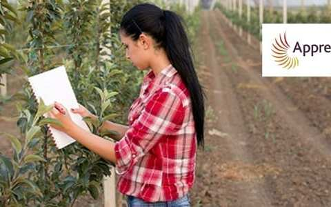 How apprenticeships can help agri-food