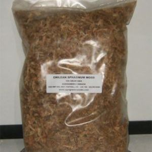 80150-Chilean-Sphagnum-Moss---150gm