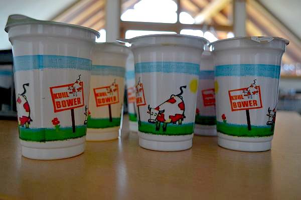 iaurt pentru copii Austria