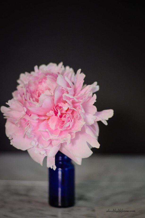Pink Peony | Peonies; A Love Affair | aheahtlylifeforme.com