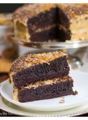 Biscoff Chocolate Coffee Cake | ahealhtylifeforme.com