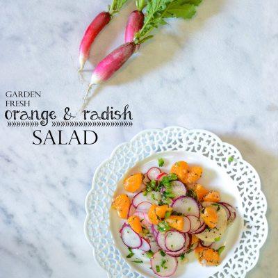 Orange and Radish Salad