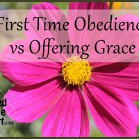First Time Obedience vs Offering Grace