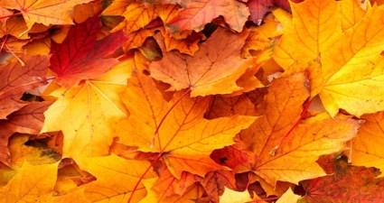 Ícones do frio para aproveitar o outono porteño
