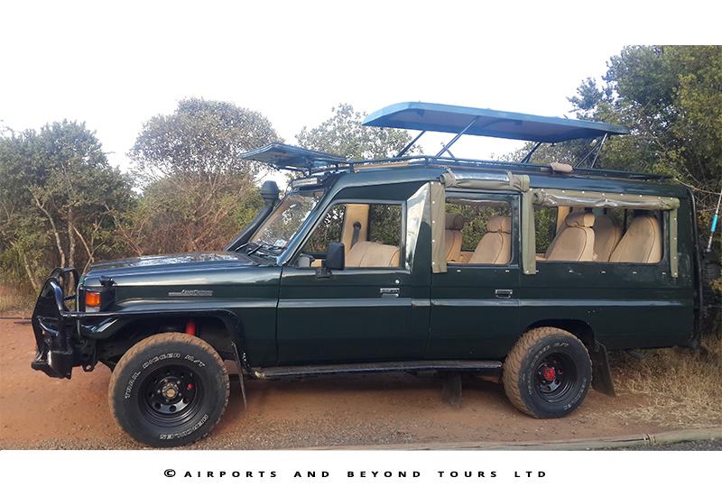 elephants-amboseli-safari